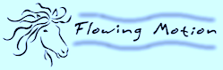 Flowing Motion Logo